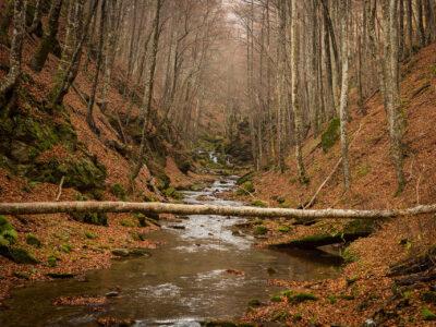 Nature, Goumenissa