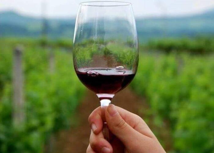 Δρόμοι Του Κρασιού